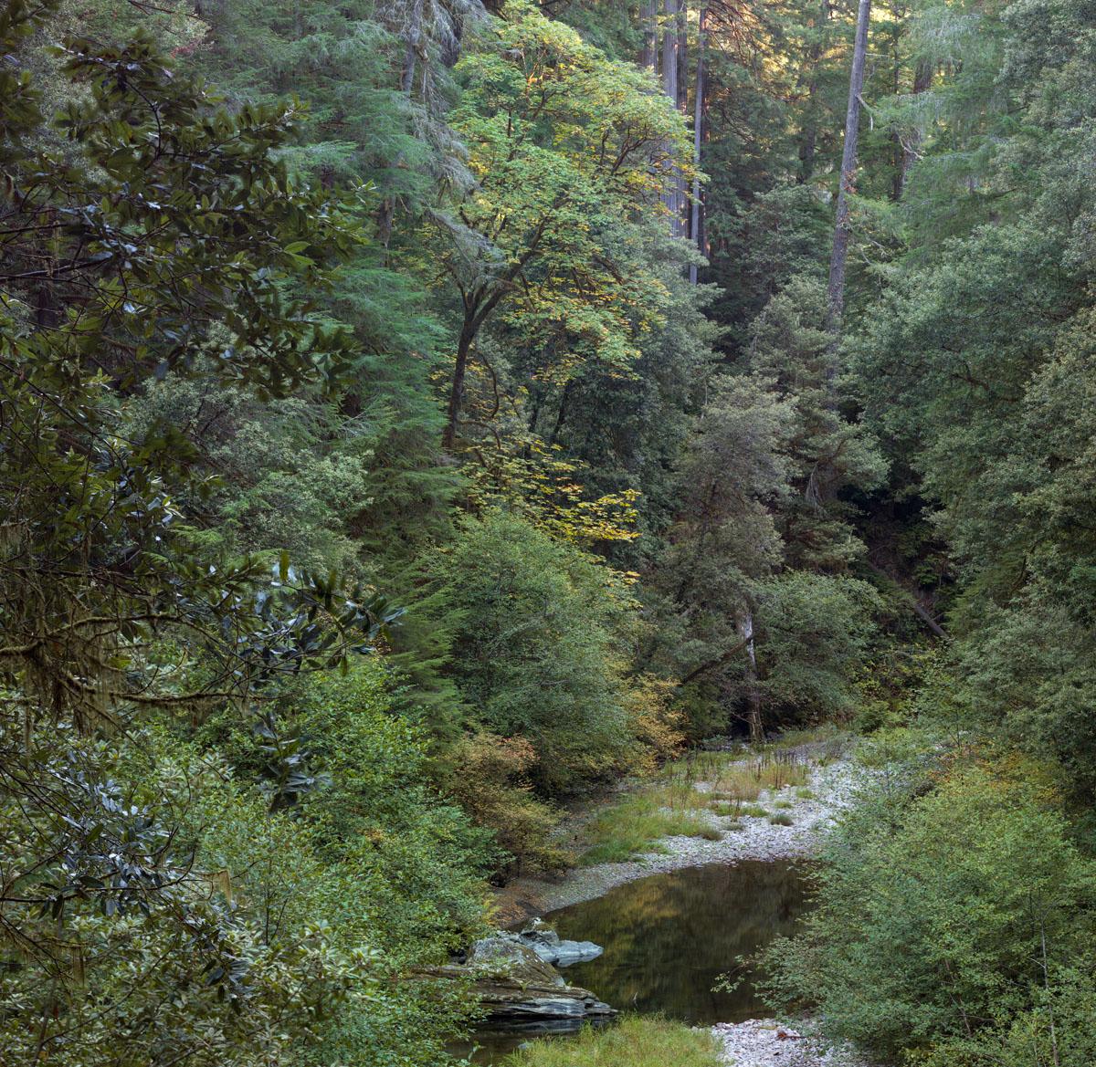 Mill Creek by jimban in Regular Member Gallery