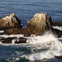 Laguna Beach Ca by jimban in Regular Member Gallery
