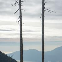 Nw To Bowen Island by Shac in Regular Member Gallery