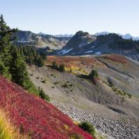 Ptarmigan Ridge Trail