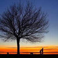 Sunset 4 by Shac in Regular Member Gallery