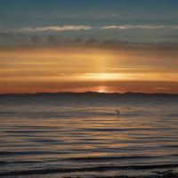 White Rock Sunset by Shac