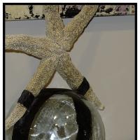 A Star Is Born by barjohn in Regular Member Gallery