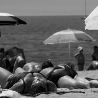 Big Sunbathers by m3photo in Regular Member Gallery