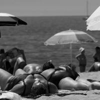 Big Sunbathers by m3photo in Regular Member Gallery