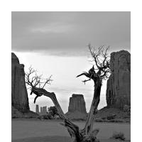 Monument Valley by BlasR