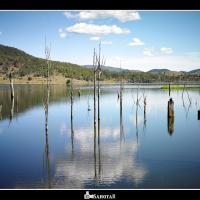Lake Somerset by SahotaR in Regular Member Gallery