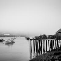 bass harbor morning by dwood