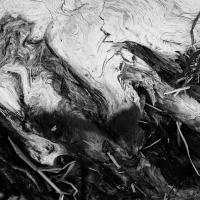 charred driftwood study 2 by dwood