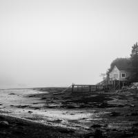 morning tide by dwood in Regular Member Gallery