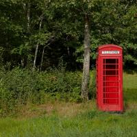 Telephone Box, Maine Woods by Bob