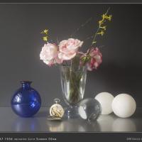 Summar by f64 in Regular Member Gallery