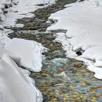 Boivin Creek  Sm by BBisset in Regular Member Gallery