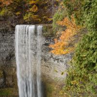 Tews Falls 001 Small by sangio in Regular Member Gallery