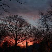 Winter Sunset by Steve P. in Regular Member Gallery