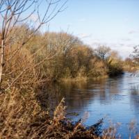The River Derwent In Winter #1 by Steve P. in Regular Member Gallery