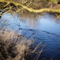 The River Derwent In Winter #2 by Steve P. in Regular Member Gallery