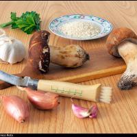Porcini Mushroom Risotto by modator in Regular Member Gallery
