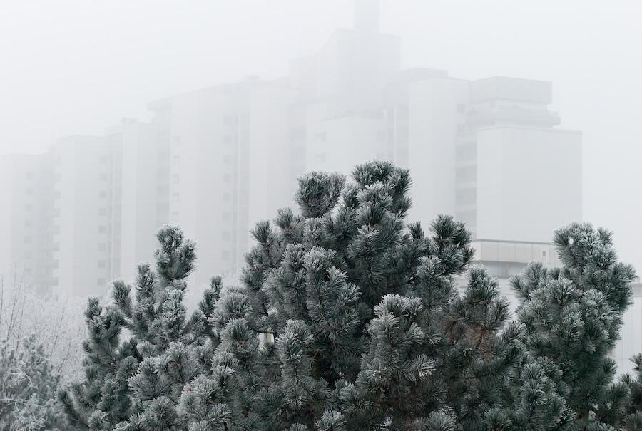 Frosty Fog by Bob in 2007-12 Munich-Prague
