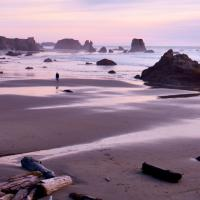 Bandon Beach Nr.1 by Bob