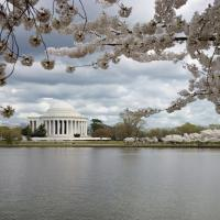 Jefferson Memorial by Bob in Bob Freund