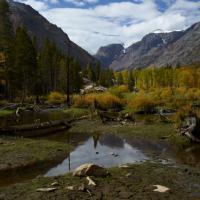 Sierra Pond by Bob