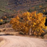 Perkinsville Autumn by Bob in Bob Freund