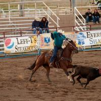May Roping - In Pursuit by Bob in Bob Freund