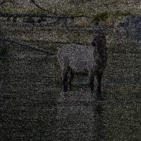 Elk Srgb / Prophoto Deltas by Bob
