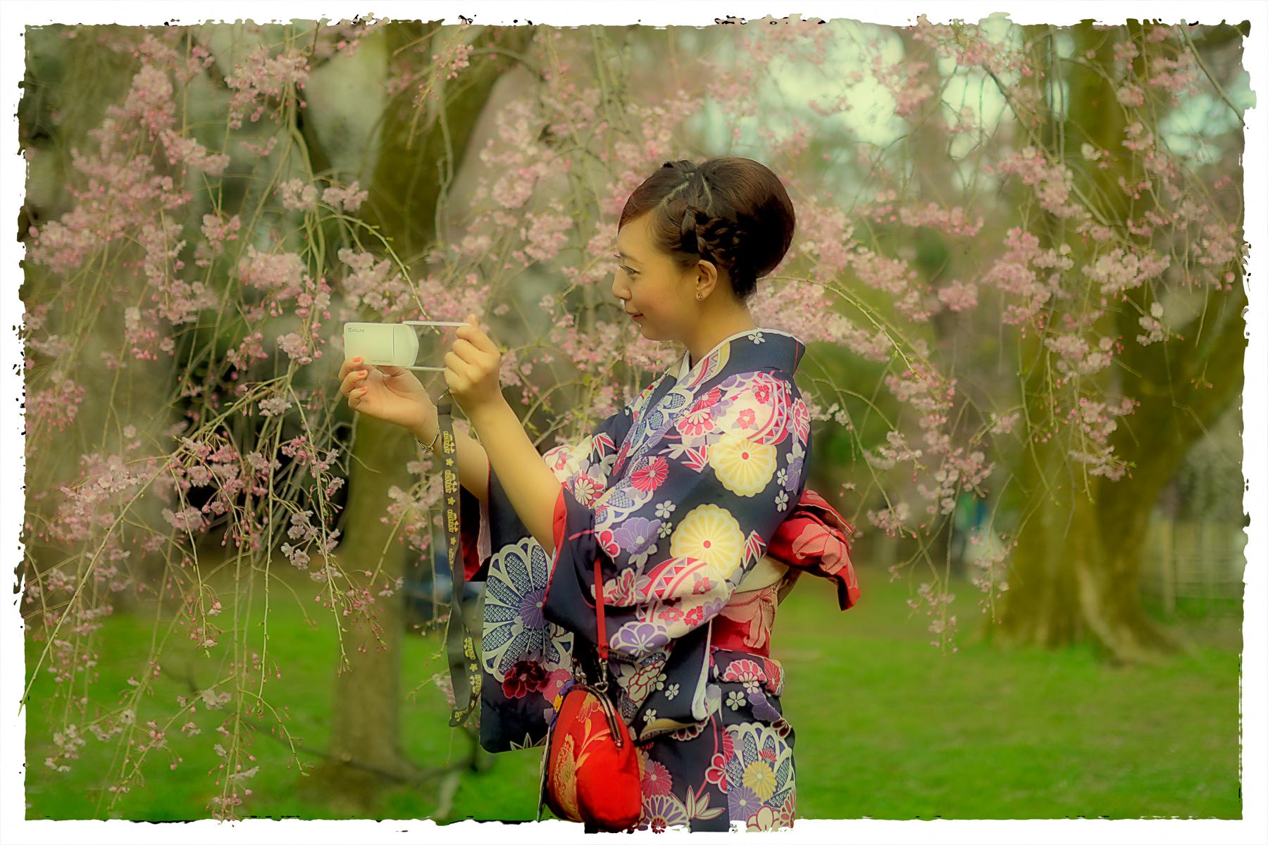 A Selfie with the Sakura by kxl in Regular Member Gallery