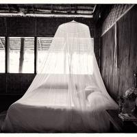 Mosquito Netting.  The Village, Pohenpi by mjm6 in Regular Member Gallery