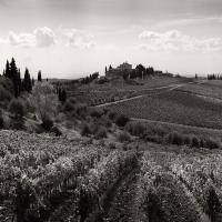 Tuscany Pano 1bwsm2 by mjm6 in Regular Member Gallery