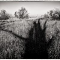 Selfie in the Shadow by baudolino in baudolino