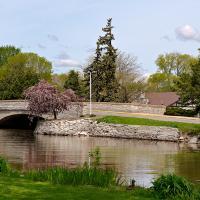 Walk In The Park by Cindy Flood in Cindy Flood