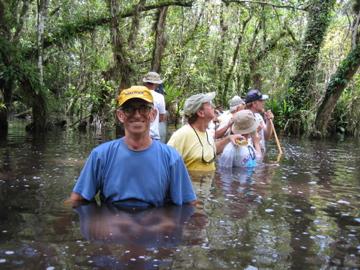 Swamp Walk by stephengilbert in Regular Member Gallery