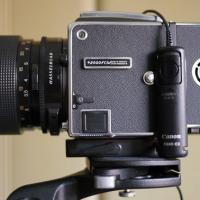 Hasselblad 2000 Fcm by neil in Regular Member Gallery