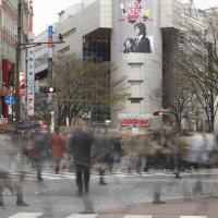 Shibuya  by neil in Regular Member Gallery