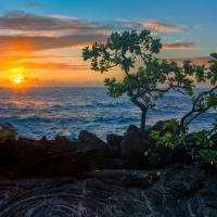 PUNA COAST SUNRISE by Charles Wood