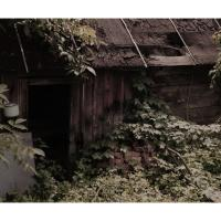 Old Wash Basin. by Yuri
