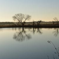 Morning At Hagerman Nwr by billbunton