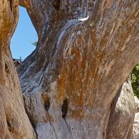 Natural Window by billbunton in Landscapes