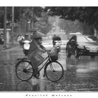 Assorted Wetness by Jorgen Udvang
