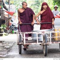 Double Monkhood by Jorgen Udvang