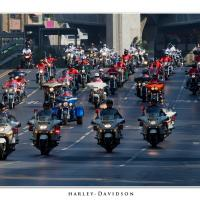 Harley-davidson by Jorgen Udvang