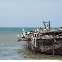 Ship O Hoi by Jorgen Udvang