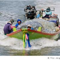The Catch by Jorgen Udvang in Jorgen Udvang