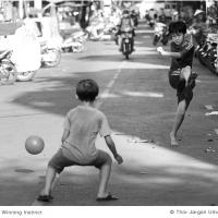 The Winning Instinct by Jorgen Udvang