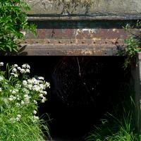 Unused Entrance by jaapv in Jaapv
