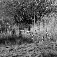 Gate and Heron by jaapv in Jaapv