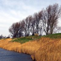 Dutch Defense by jaapv